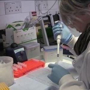 Covid-19: Desenvolvedores de vacina no Reino Unido vão fazer testes com 10 mil pessoas.