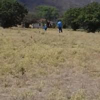Obras de energia elétrica contemplarão cerca de 200 famílias. - Foto 3