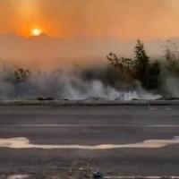 Vários incêndios foram registrados em lotes e áreas de vegetação nesta quarta em Guanambi. - Foto 2