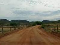 A Gestão Municipal continua os serviços de recuperação das estradas vicinais da Zona Rural de Matina.